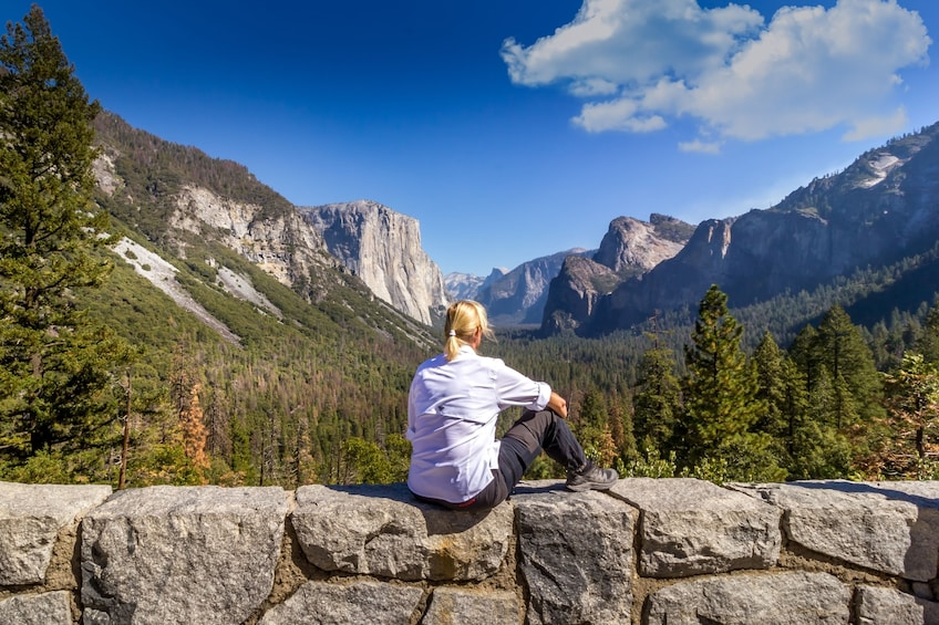 Show item 4 of 10. Total Yosemite Experience from San Jose