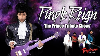 Purple Reign - The Prince Tribute Concert