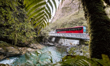 Glass-roofed coach crossing a bridge on the Milford Sound tour
