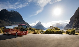 Milford Sound Coach & Nature Cruise with Lunch
