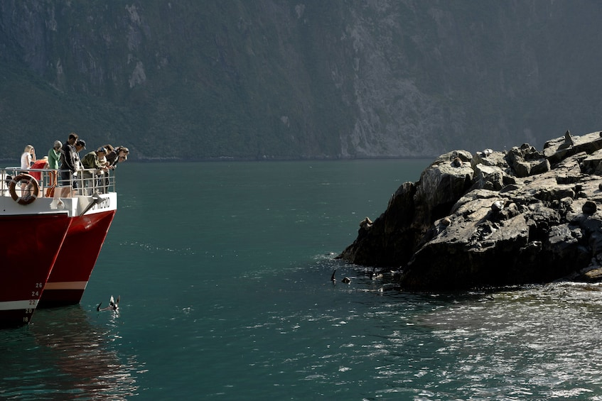 Show item 3 of 12. Boat tour of the Milford Sound