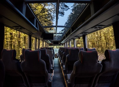 Aboard the Milford Sound tour coach