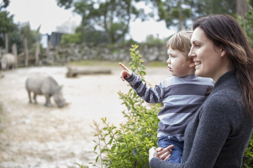 Mother and child looking at rhinoceros at the Auckland Zoo