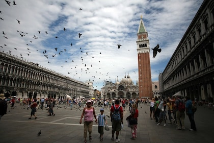 Birds fly above tourists in Piazza San Marco
