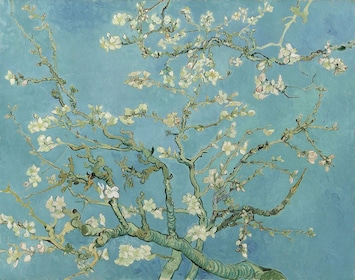 Cherry blossom branches and flowers by Van Gogh