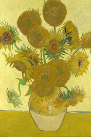 Sunflower detail at the Van Gogh Museum