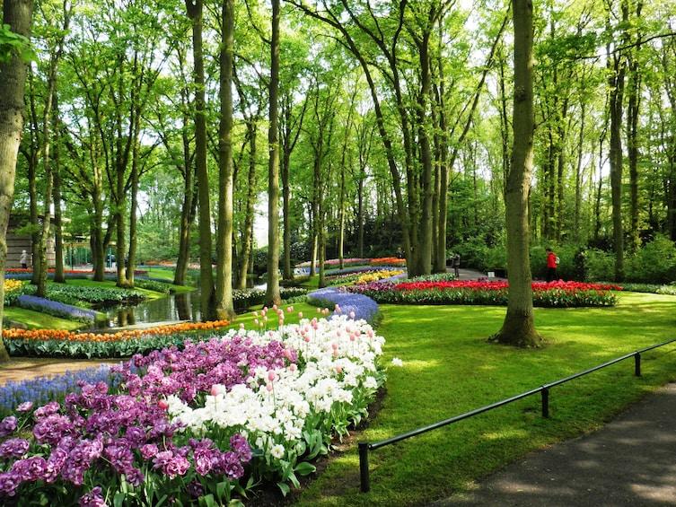 Charger l'élément 1 sur 6. Keukenhof Gardens in Amsterdam