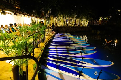 Photo of paddle boards lined up on a rack