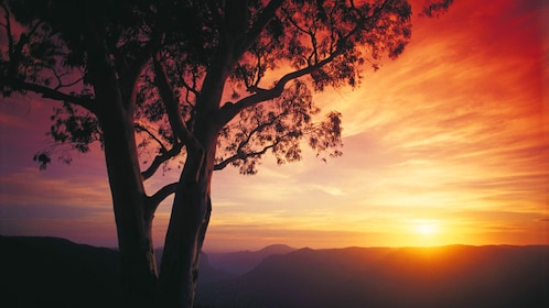 Sun setting on the horizon of the Blue Mountains of Melbourne