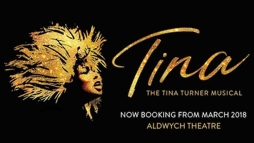 Promo for Tina: The Tina Turner Musical in London