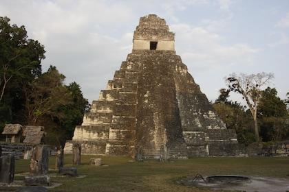 Temple IV in Tikal National Park in Guatemala