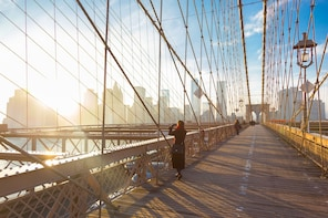 Visita por los barrios de Brooklyn, Bronx, Harlem, Queens y Coney Island