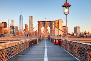 Boroughs Tour: Brooklyn, Bronx, Harlem, Queens & Coney Island