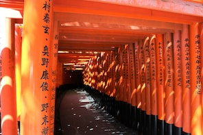 Kyoto Perfect Tour: 1day bus tour