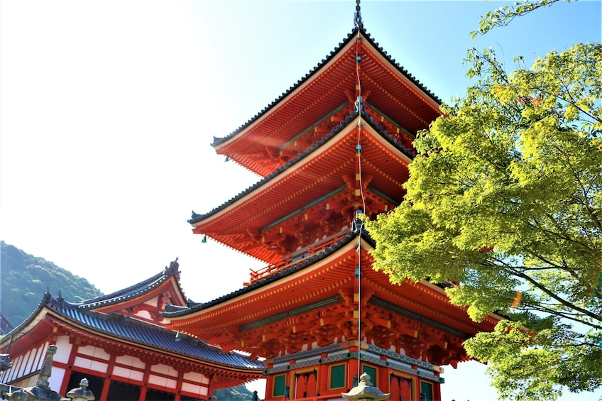 Show item 2 of 10. Temple in Kyoto
