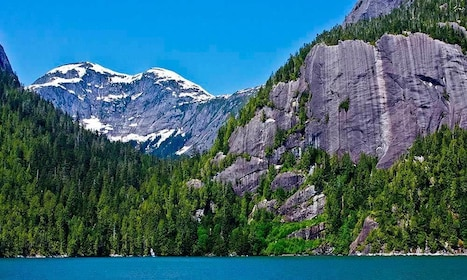 Mountain and forest in Ketchikan
