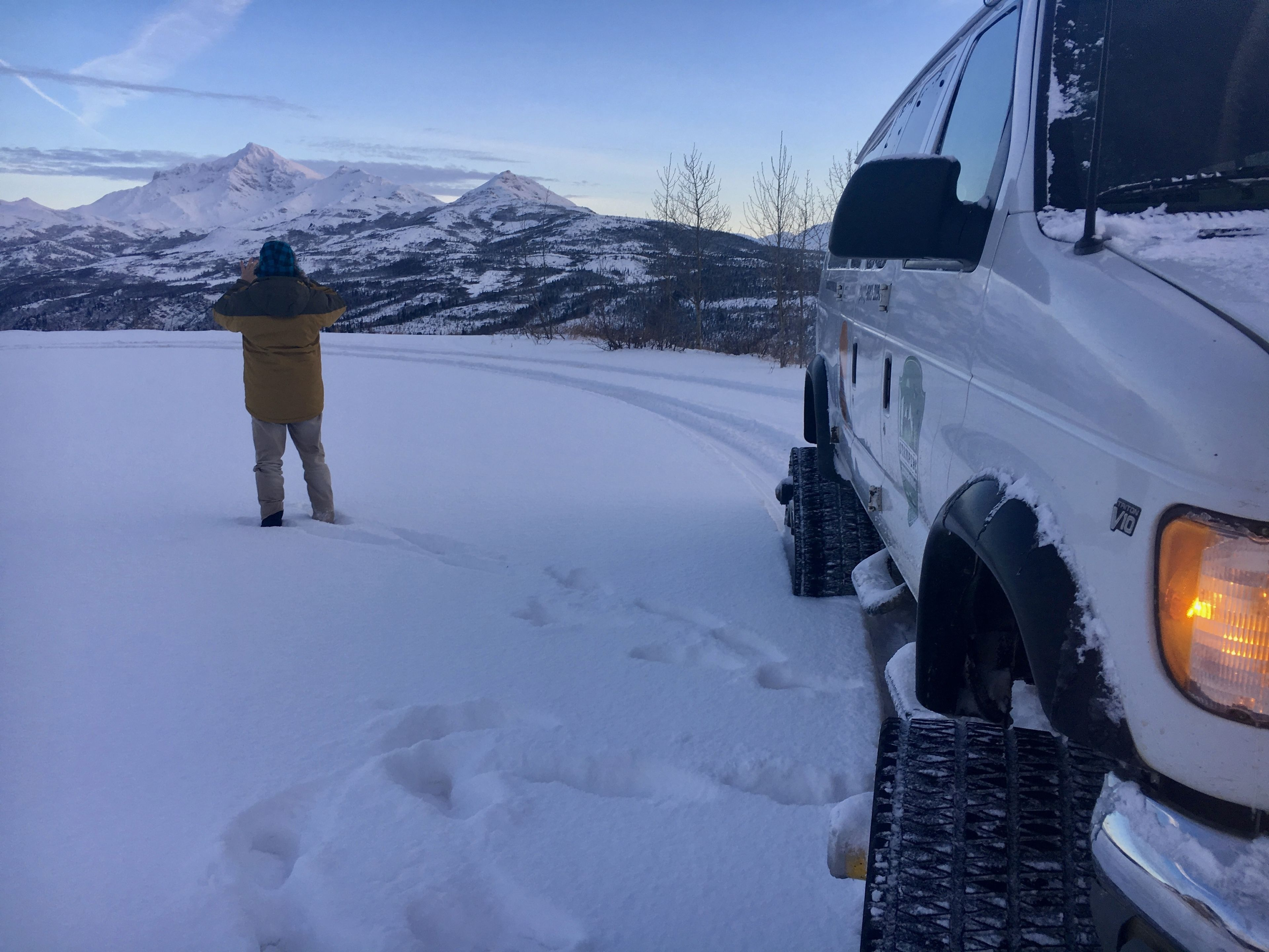 Person standing next to a van in Denali Park