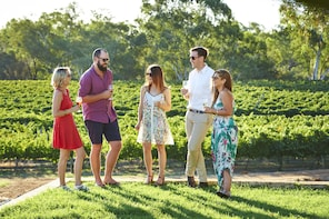 Vineyard & Winery Tours