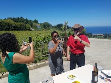 Txakoli Wine Tour from San Sebastian