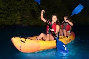 Bioluminescent Bay Kayaking Adventure