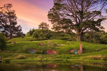 Sunset views on the Hobbiton Movie Set Tour