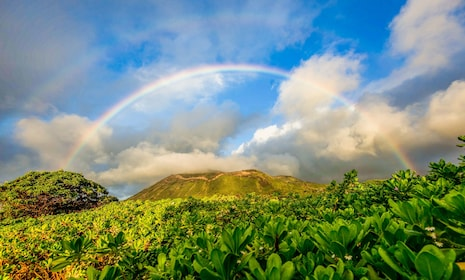 View of a beautiful rainbow in Oahu