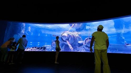 Antalya Aquarium Only with Optional Transfer