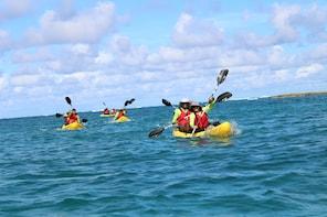 Kayak Adventure at Private Island