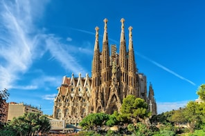 Priority access: Sagrada Familia & Park Guell Guided Tour