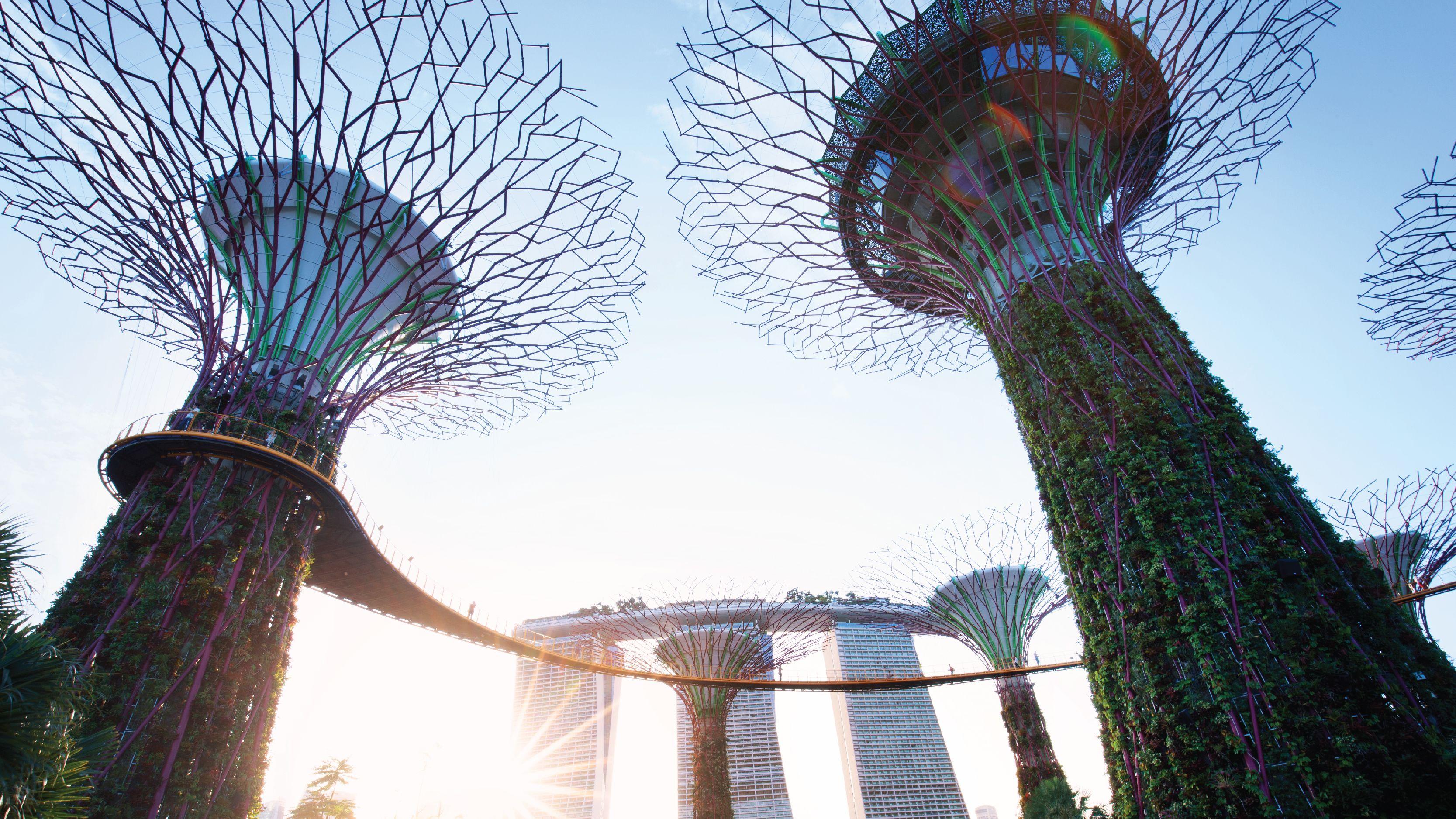 SingaporePassExpedia-02.jpg