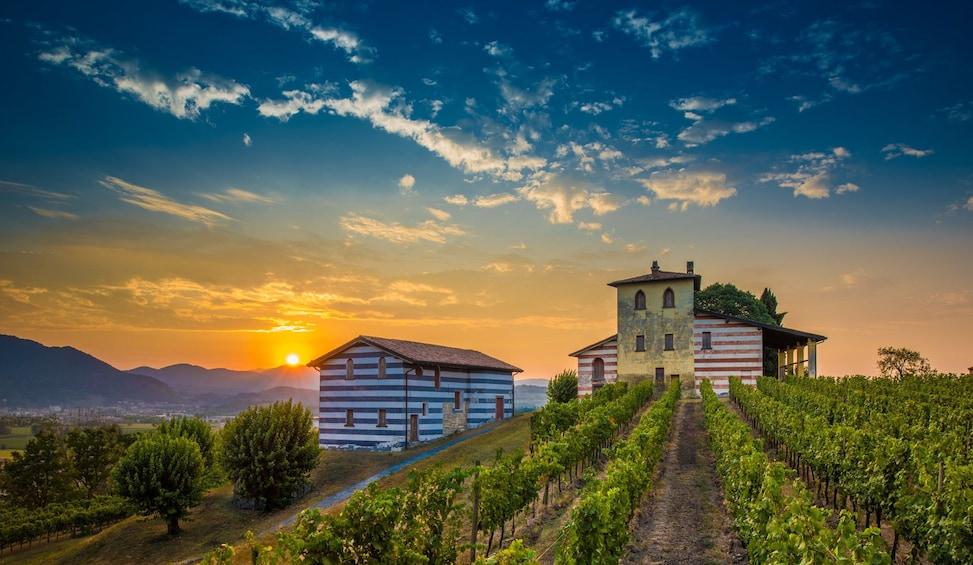 Show item 1 of 4. Franciacorta Wine Tasting & Shopping Tour from Bergamo