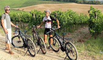 Small-Group E-Bike Chianti Tour with Winery Lunch from Siena