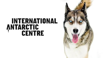 Entrada al museo International Antarctic Centre
