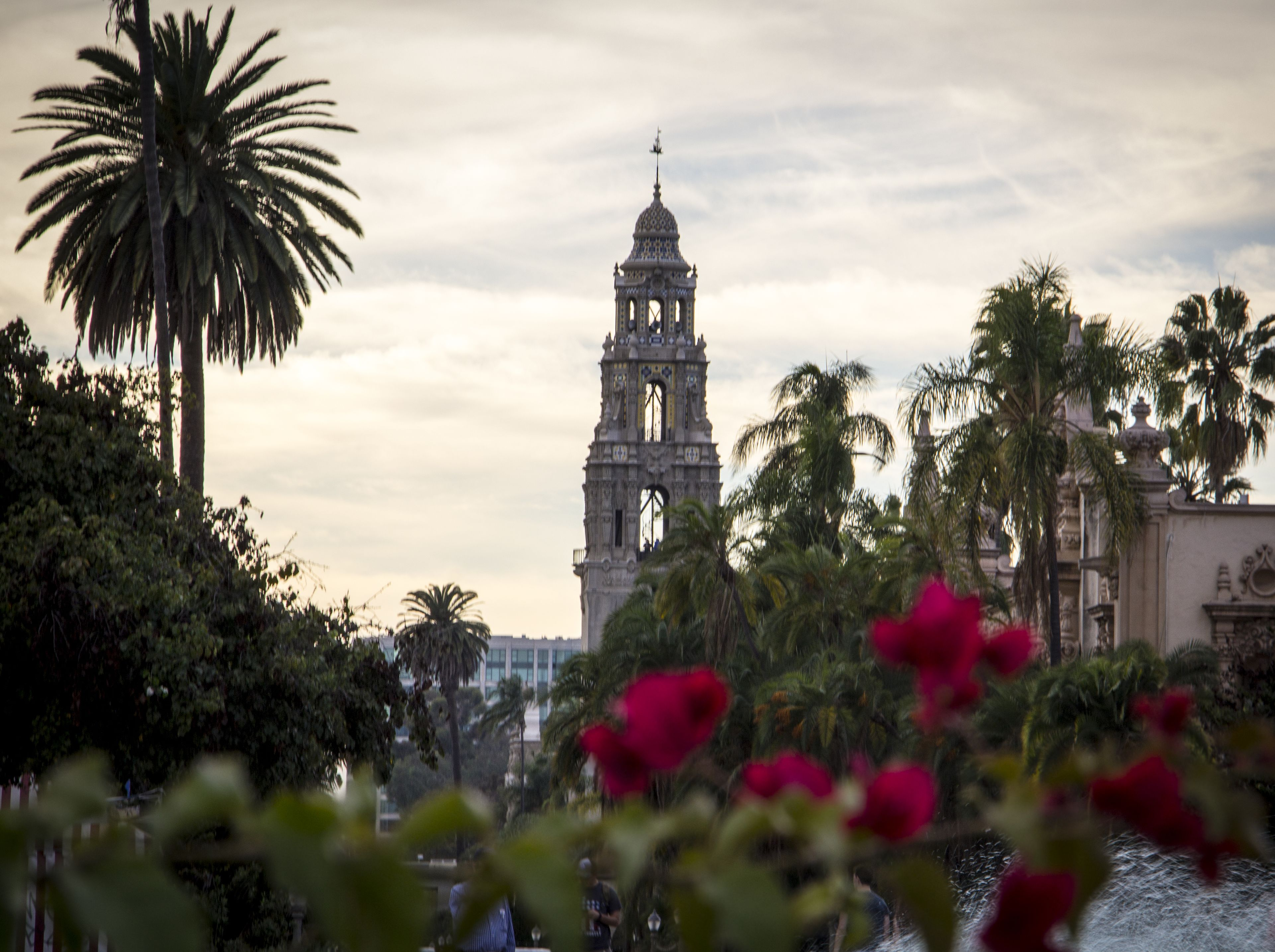 San Diego Balboa Park Museums Admission Pass