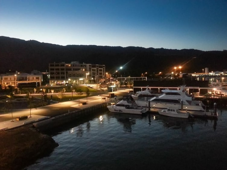 Show item 2 of 5. Harbor at night in PIcton