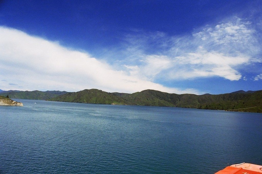 Show item 5 of 5. View of the water from Picton