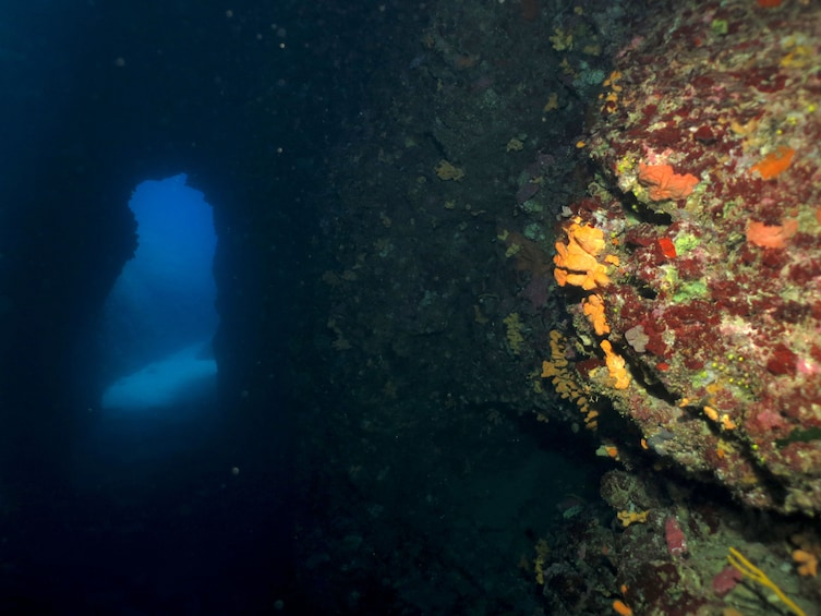 Show item 2 of 6. Underwater cave off the coast of Athens, Greece