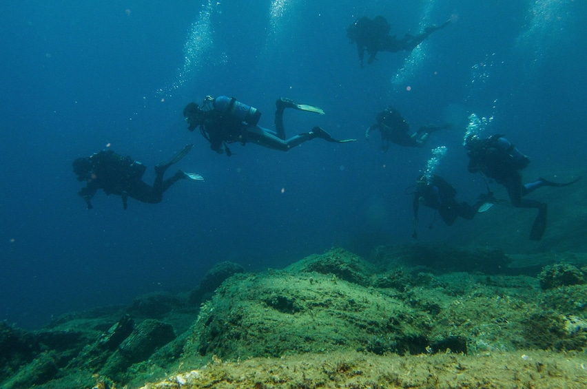 Show item 2 of 6. SCUBA divers underwater