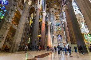 Skippa kön-inträde och guidad rundtur till La Sagrada Família och Parc Güel...