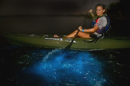 Kayaker paddling through bioluminescence