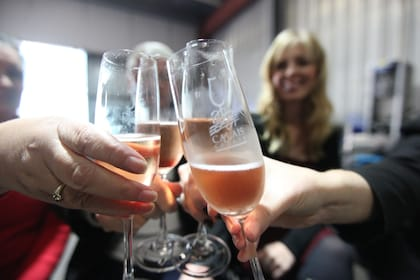Four people toasting with champagne