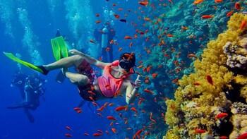 Snorkeling in Mnemba Atoll in Zanzibar