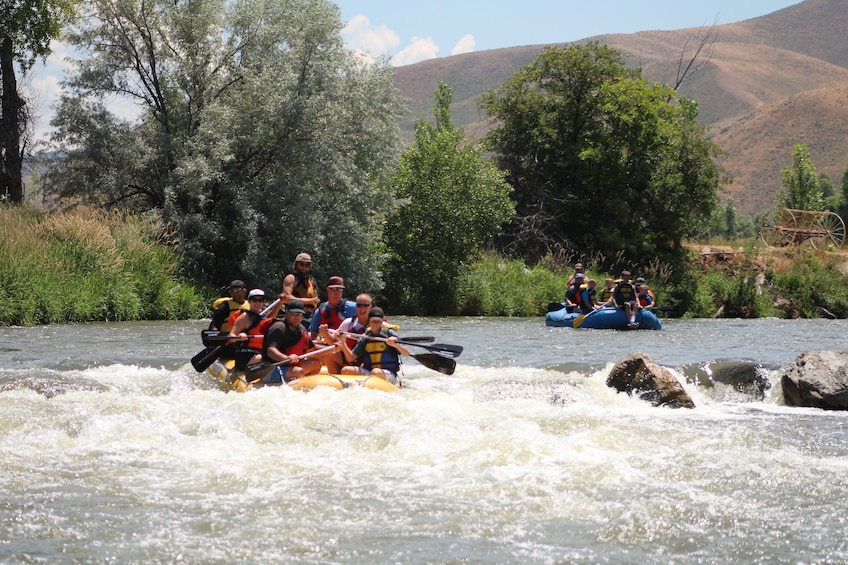 Show item 10 of 10. Half-Day River Rafting Trip