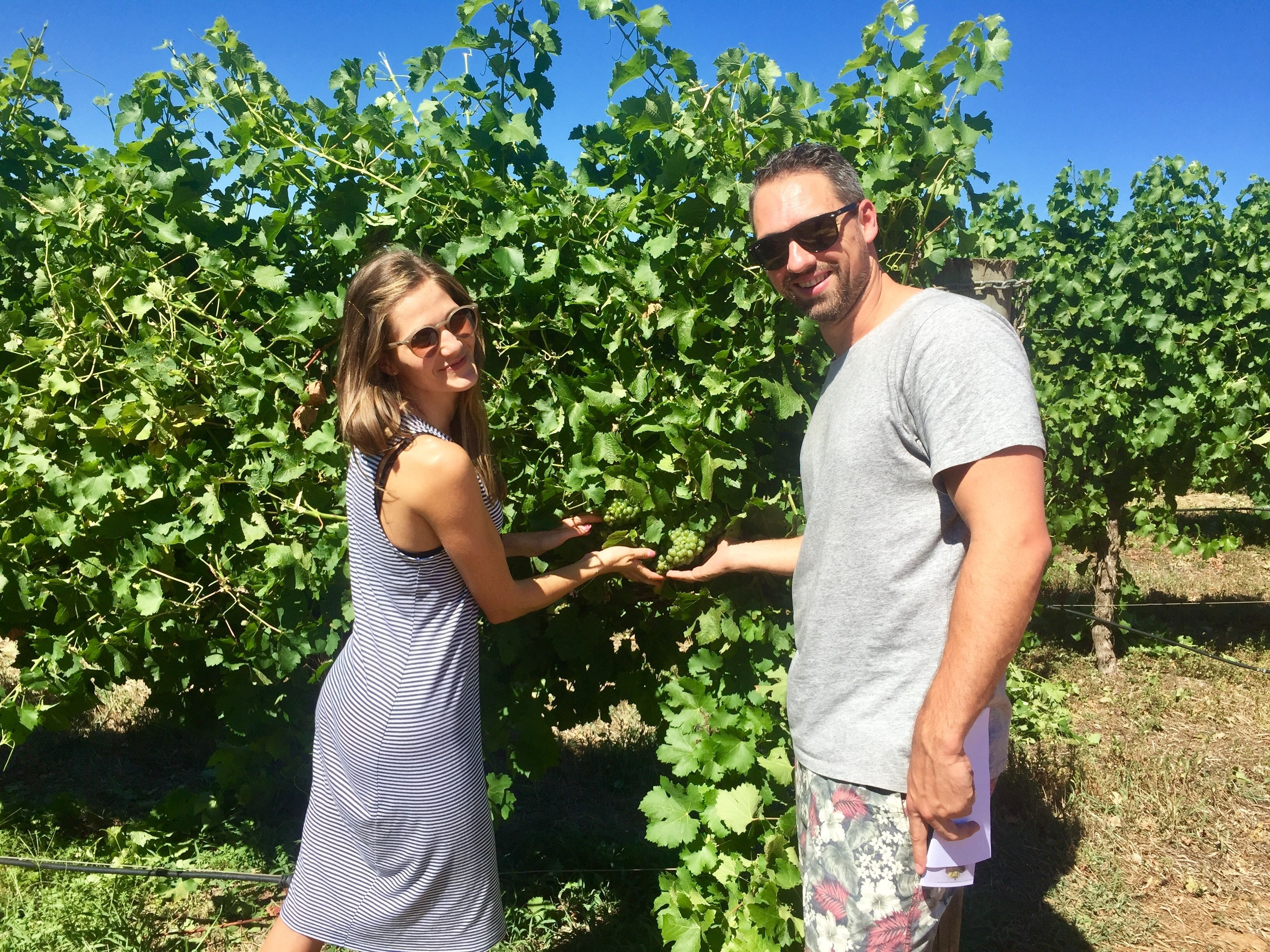 Margaret River Wine Tour (departs Dunsborough/Busselton)
