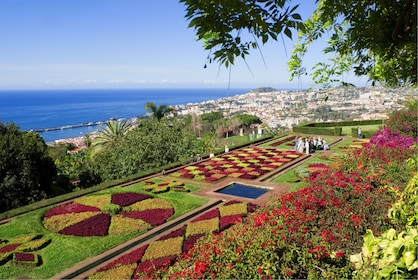 Aerial view of a botanical garden in Porto, Portugal