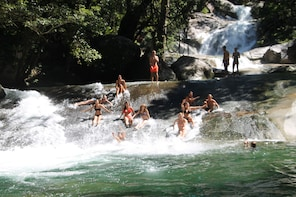Waterfalls and Rainforest Tour