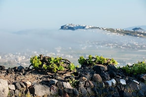 Discover Santorini Tour