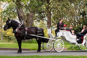 Private BEACON HILL PARK Horse-Drawn Carriage Tour, Victoria