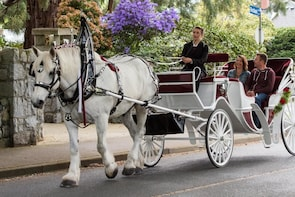 Private HERITAGE Horse-Drawn Carriage Tour of Victoria
