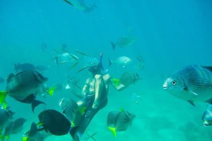 Glass-Bottom Kayak & Snorkel at the Two Bays Tour
